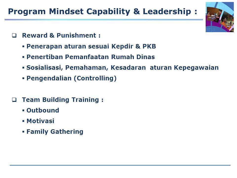 Program Mindset Capability & Leadership :