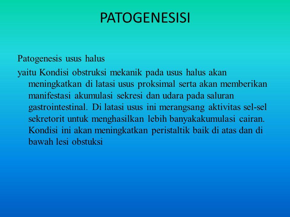 PATOGENESISI Patogenesis usus halus