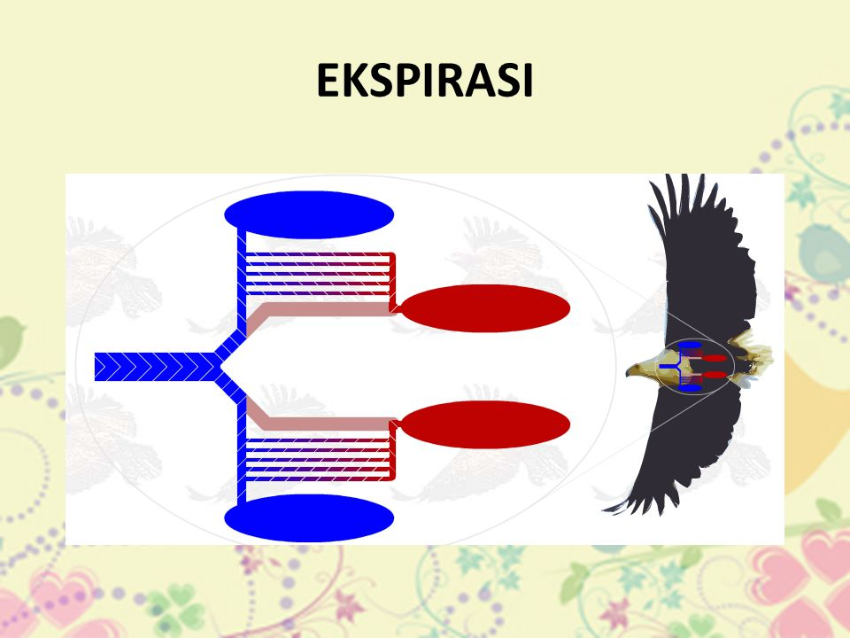 EKSPIRASI