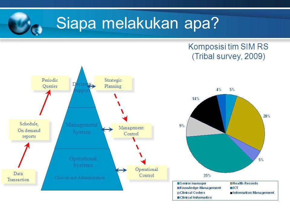 Siapa melakukan apa Komposisi tim SIM RS (Tribal survey, 2009)