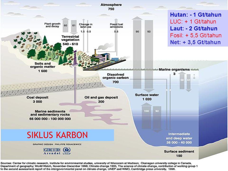 SIKLUS KARBON Hutan: - 1 Gt/tahun LUC: + 1 Gt/tahun Laut: - 2 Gt/tahun