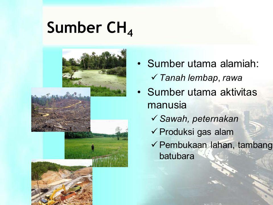 Sumber CH4 Sumber utama alamiah: Sumber utama aktivitas manusia