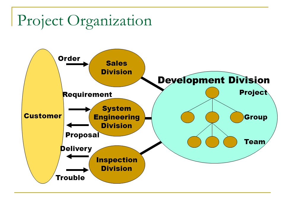 Project Organization Development Division Order Sales Division