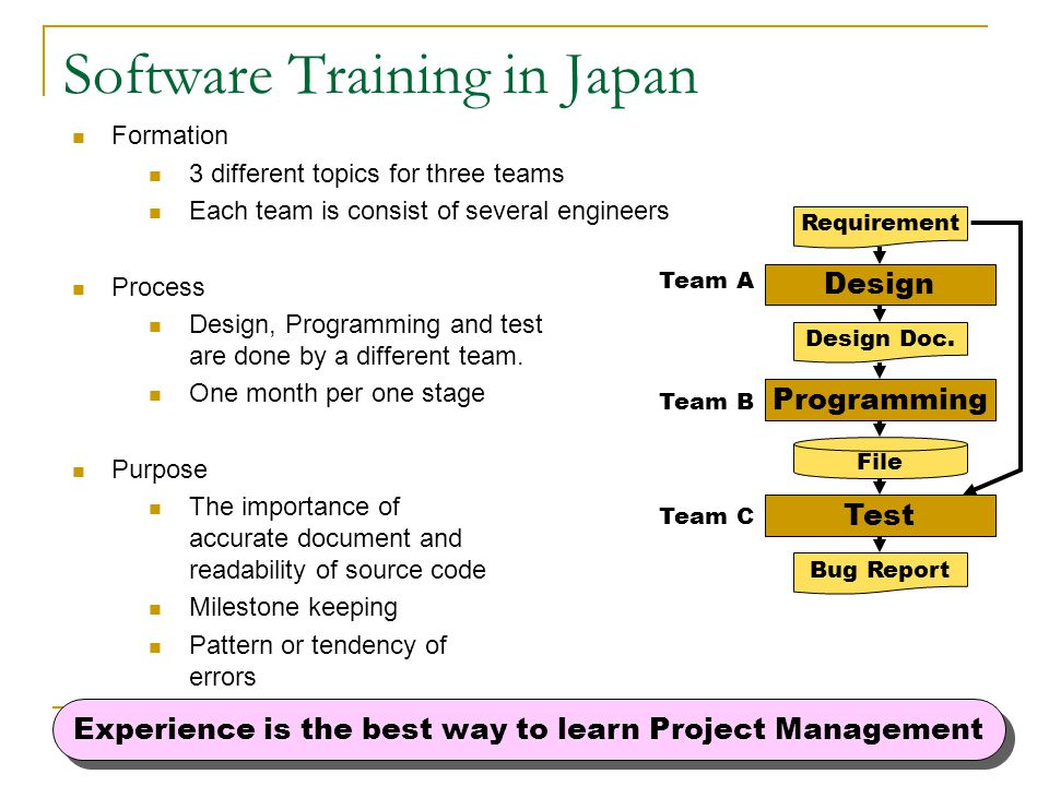 Software Training in Japan
