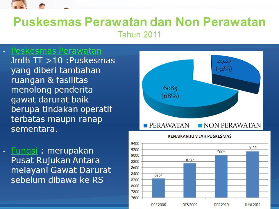 Puskesmas Perawatan dan Non Perawatan Tahun 2011