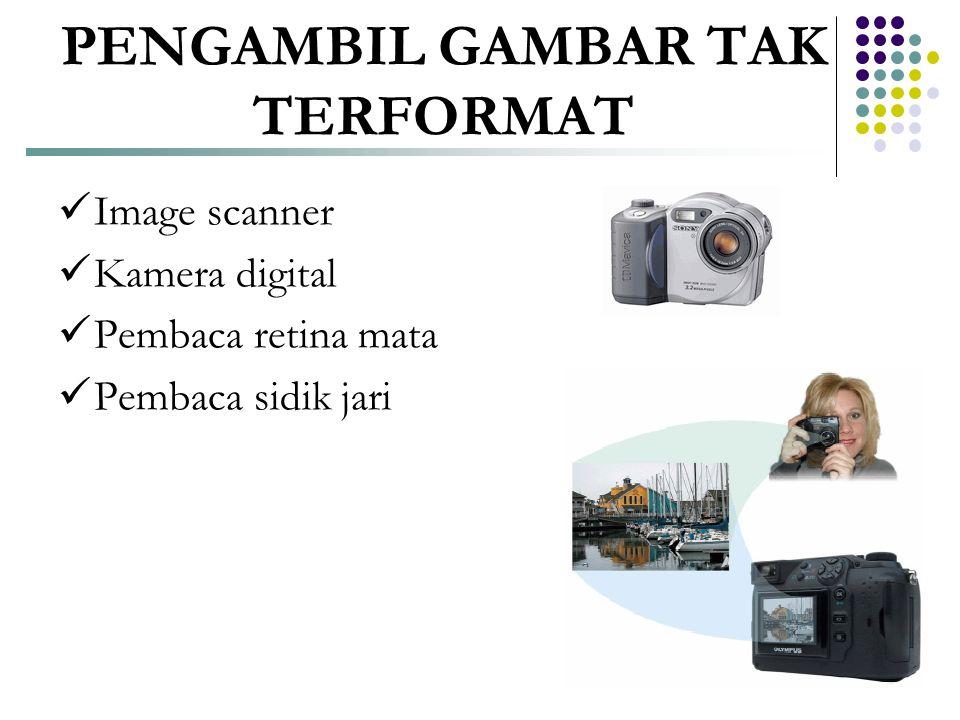 PENGAMBIL GAMBAR TAK TERFORMAT