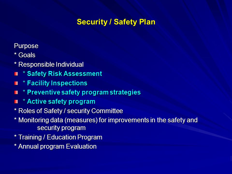 Security / Safety Plan Purpose * Goals * Responsible Individual