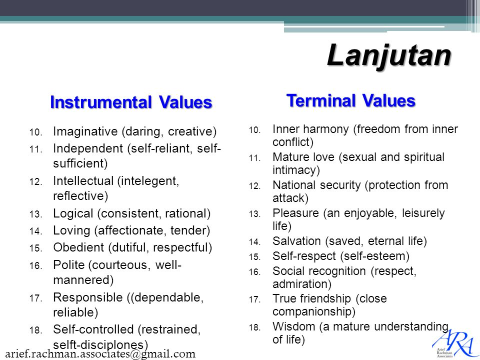 Lanjutan Terminal Values Instrumental Values