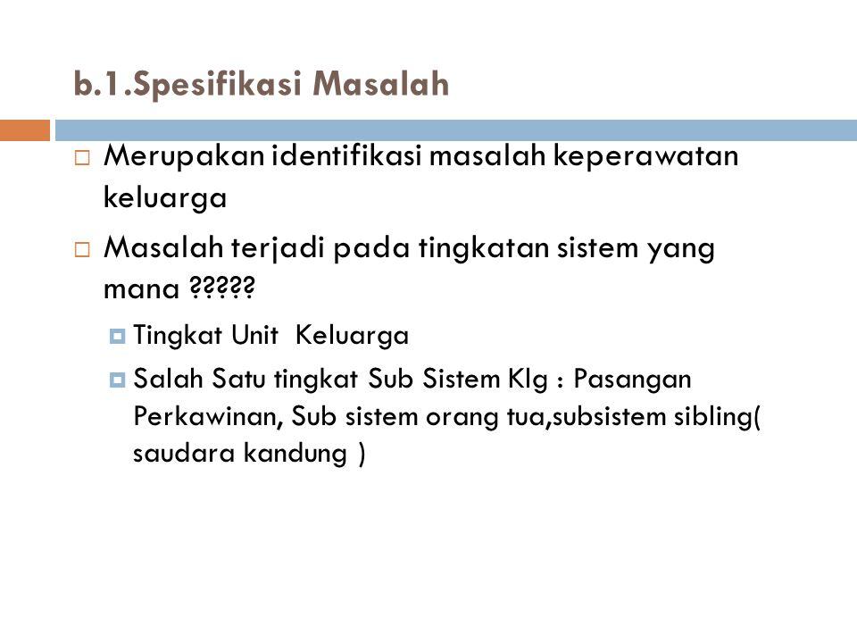 b.1.Spesifikasi Masalah Merupakan identifikasi masalah keperawatan keluarga. Masalah terjadi pada tingkatan sistem yang mana