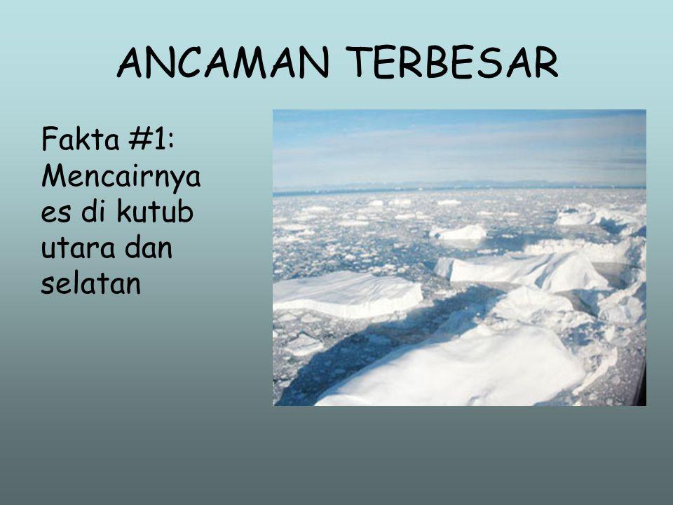 ANCAMAN TERBESAR Fakta #1: Mencairnya es di kutub utara dan selatan