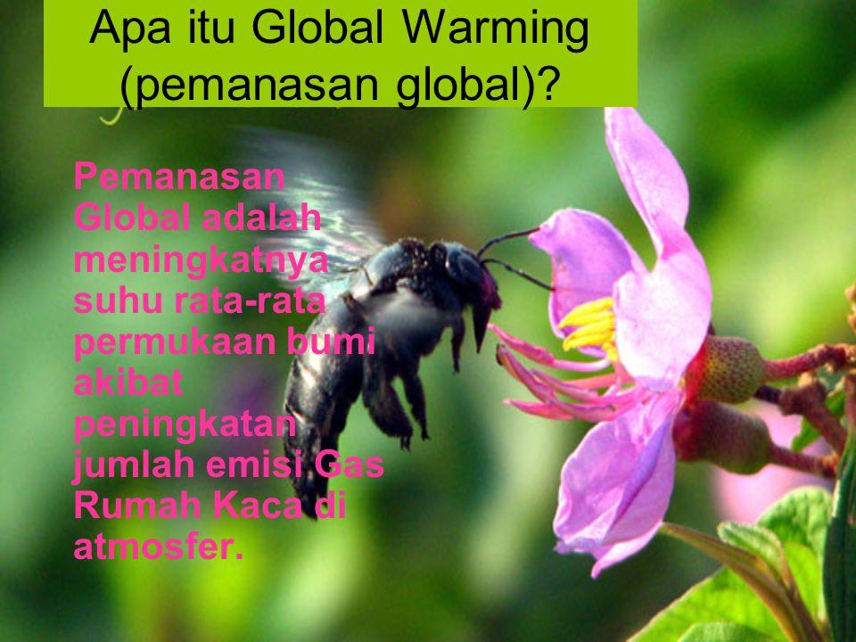 Apa itu Global Warming (pemanasan global)