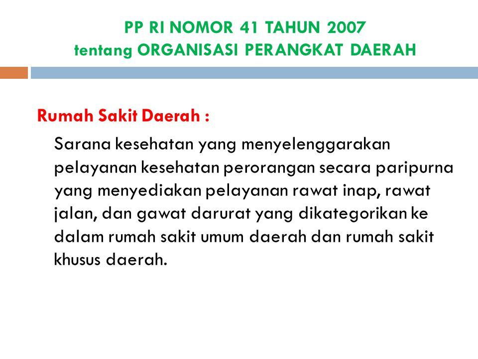 PP RI NOMOR 41 TAHUN 2007 tentang ORGANISASI PERANGKAT DAERAH