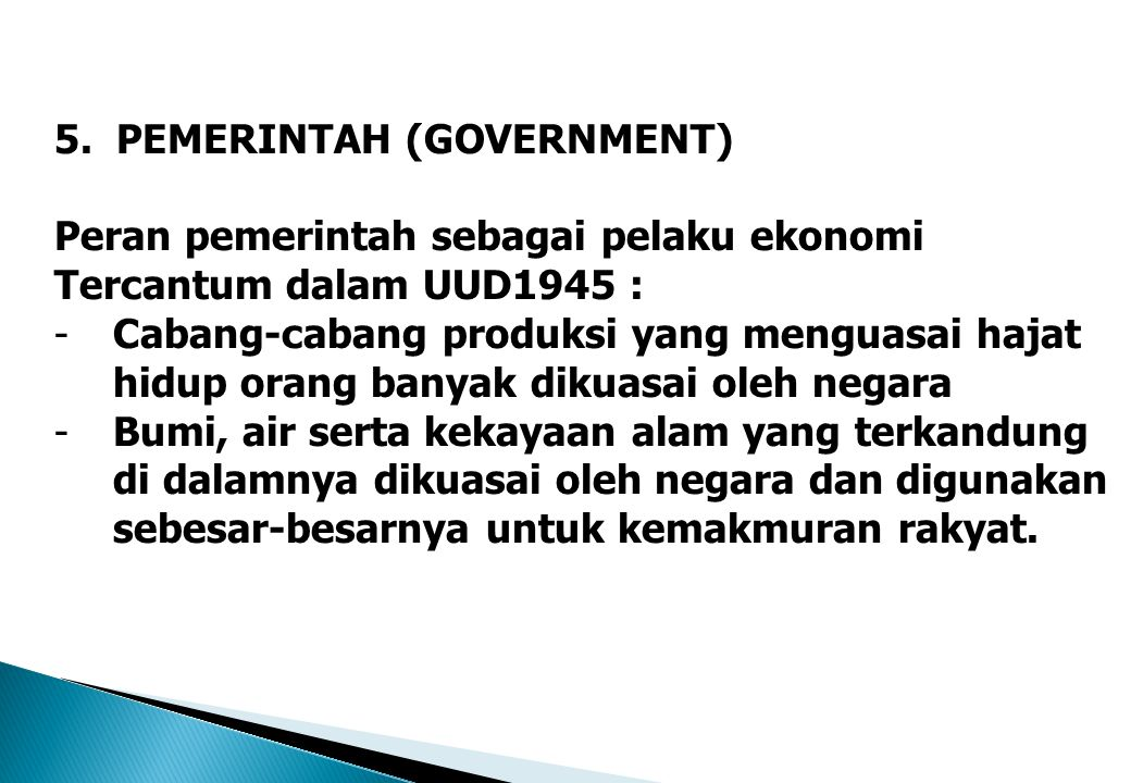 5. PEMERINTAH (GOVERNMENT)