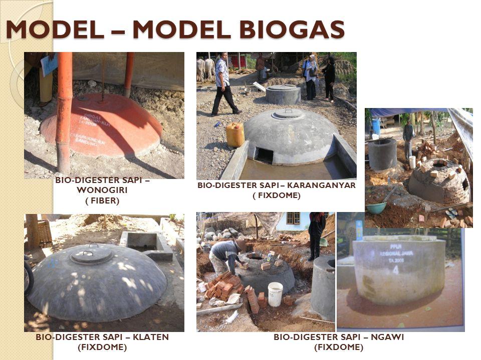MODEL – MODEL BIOGAS BIO-DIGESTER SAPI – WONOGIRI ( FIBER)