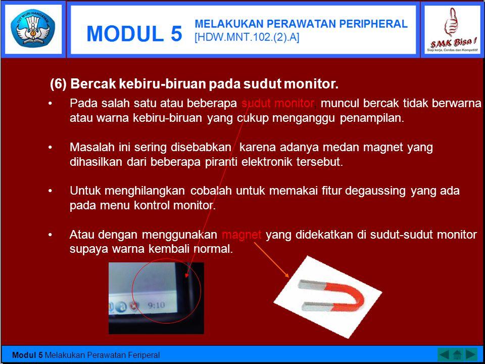 (6) Bercak kebiru-biruan pada sudut monitor.
