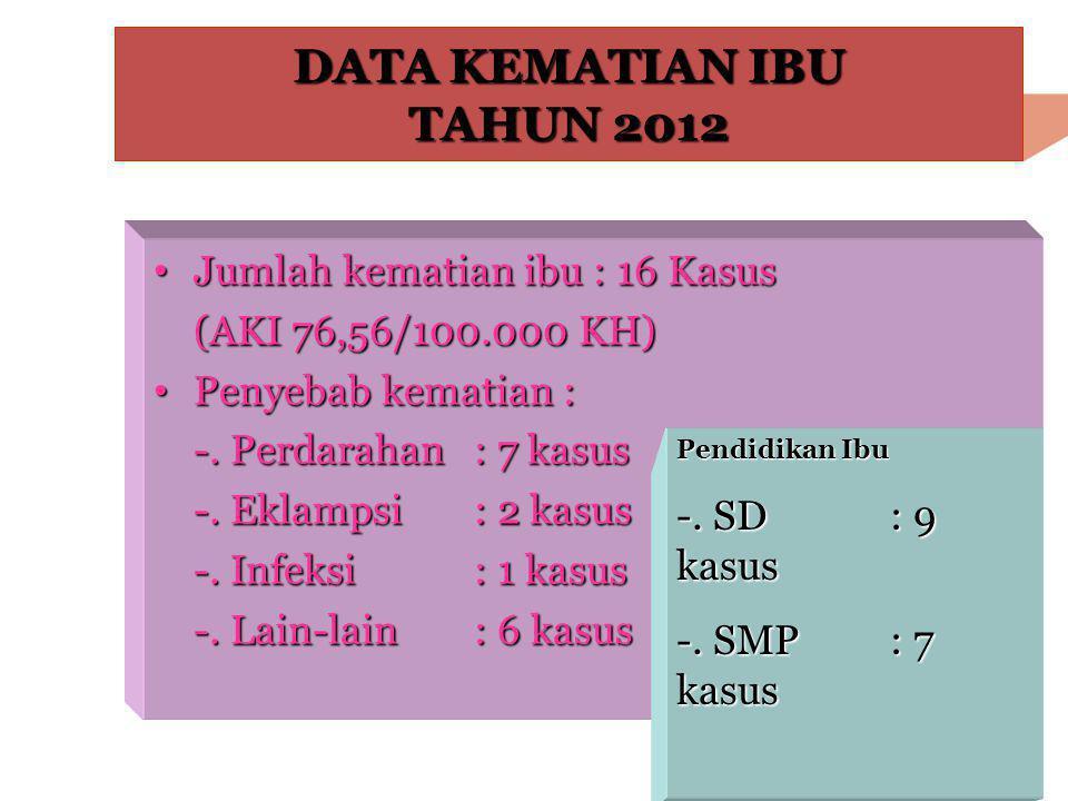 DATA KEMATIAN IBU TAHUN 2012