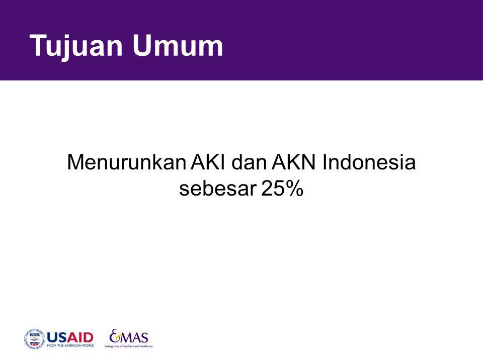 Menurunkan AKI dan AKN Indonesia sebesar 25%