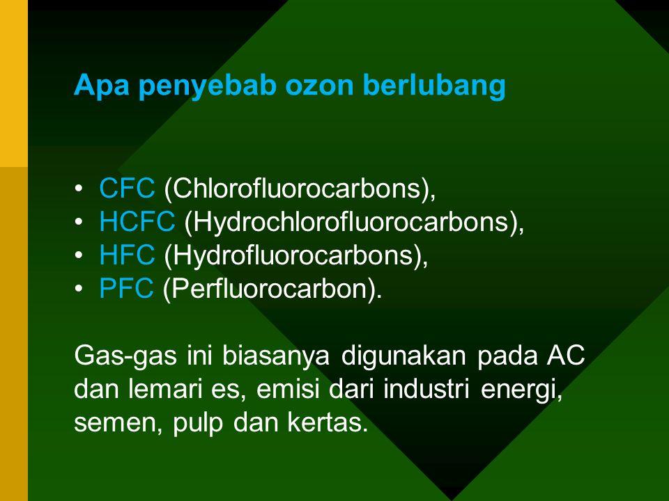 Apa penyebab ozon berlubang