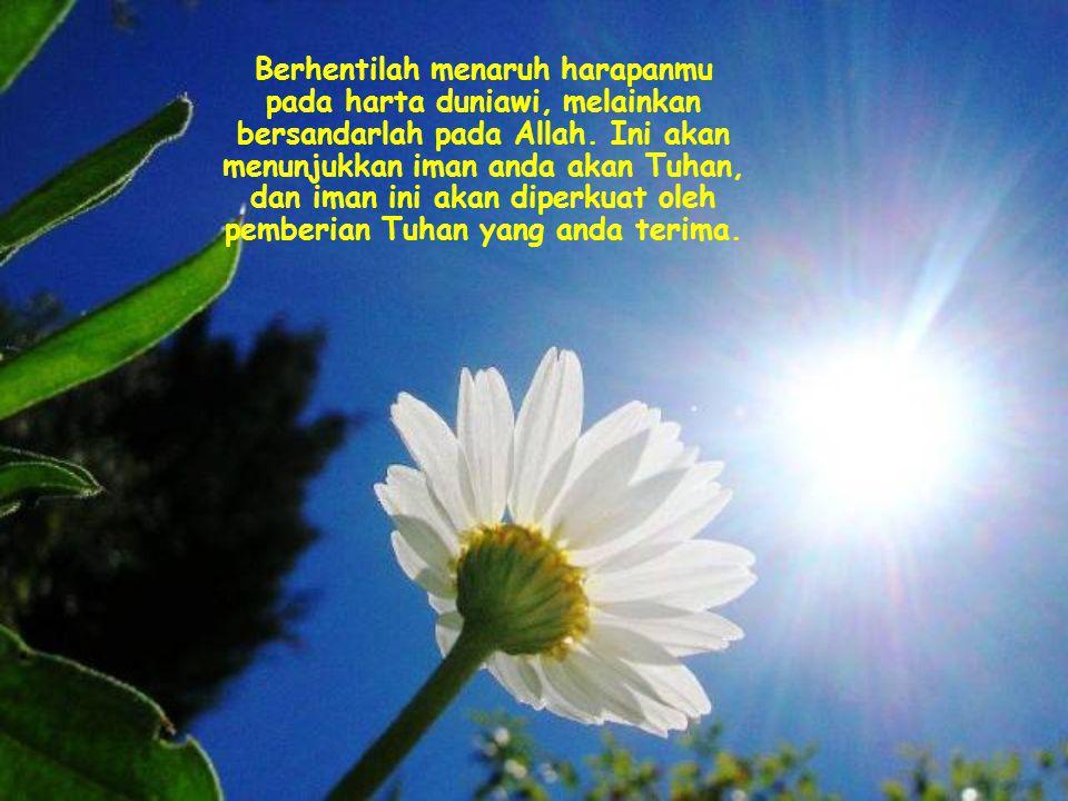 Berhentilah menaruh harapanmu pada harta duniawi, melainkan bersandarlah pada Allah.