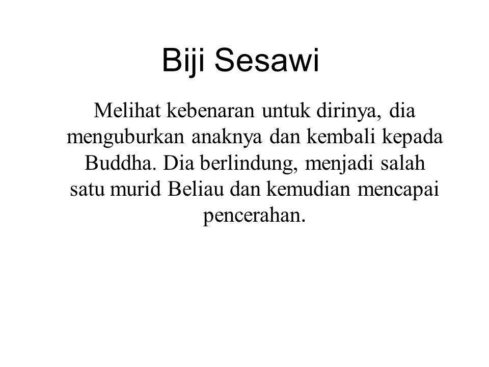 Biji Sesawi