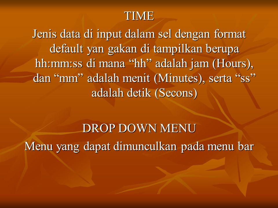 TIME Jenis data di input dalam sel dengan format default yan gakan di tampilkan berupa hh:mm:ss di mana hh adalah jam (Hours), dan mm adalah menit (Minutes), serta ss adalah detik (Secons) DROP DOWN MENU Menu yang dapat dimunculkan pada menu bar