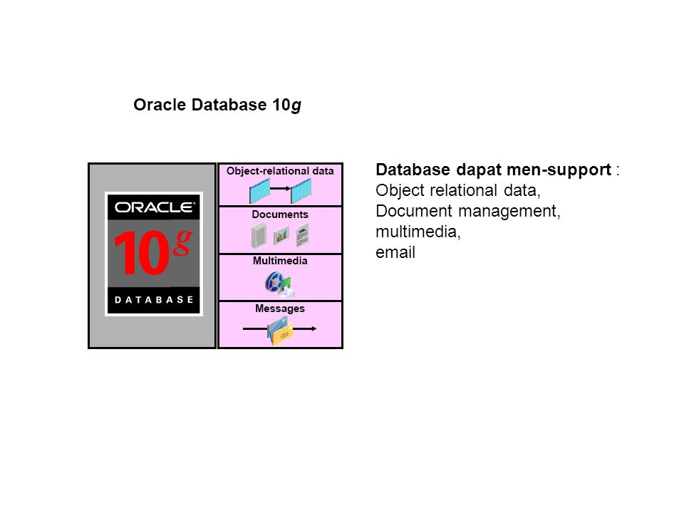 Database dapat men-support :