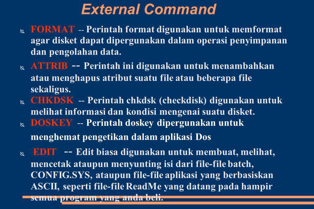 External Command FORMAT -- Perintah format digunakan untuk memformat agar disket dapat dipergunakan dalam operasi penyimpanan dan pengolahan data.