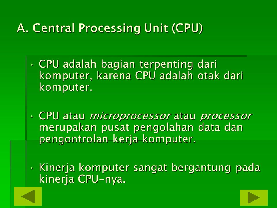 A. Central Processing Unit (CPU)