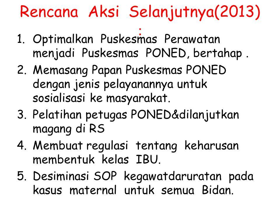 Rencana Aksi Selanjutnya(2013) :