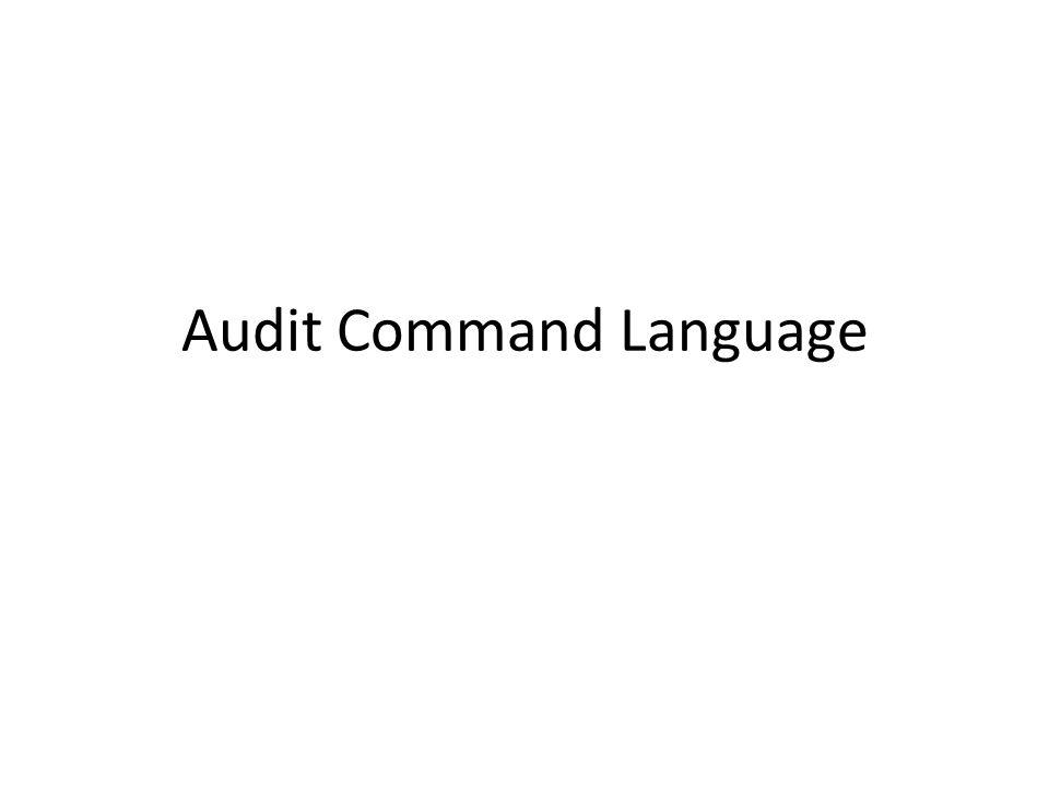 Audit Command Language