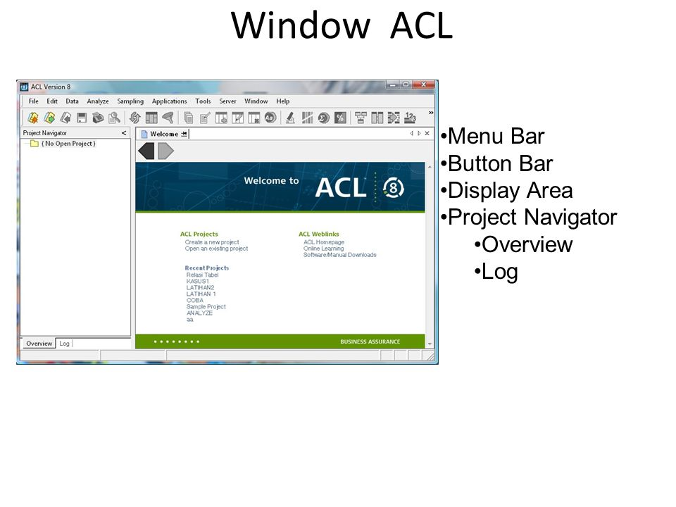 Window ACL Menu Bar Button Bar Display Area Project Navigator Overview
