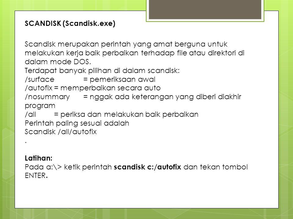 SCANDISK (Scandisk.exe)