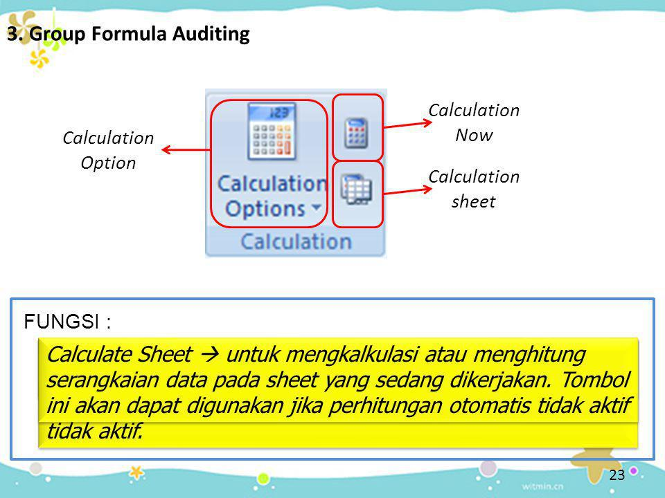 3. Group Formula Auditing