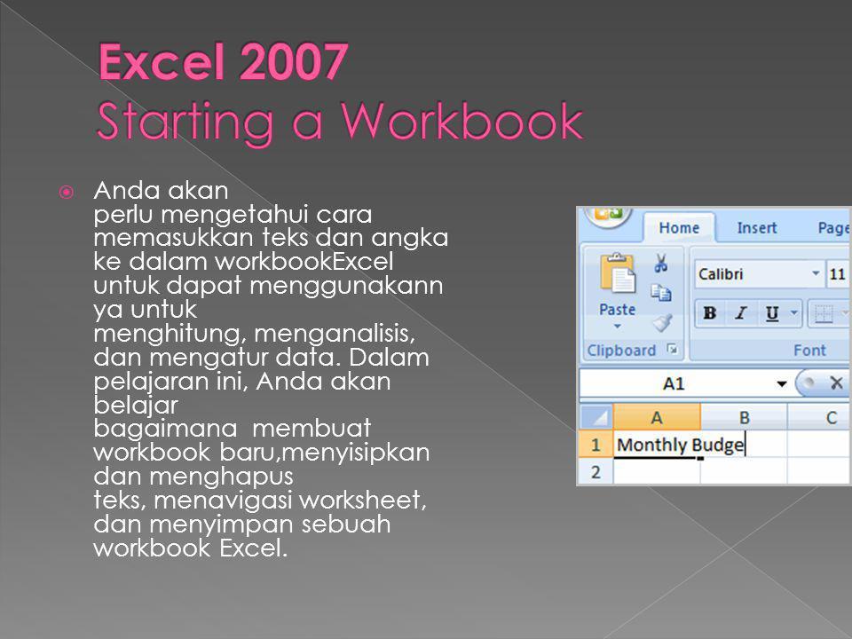 Excel 2007 Starting a Workbook