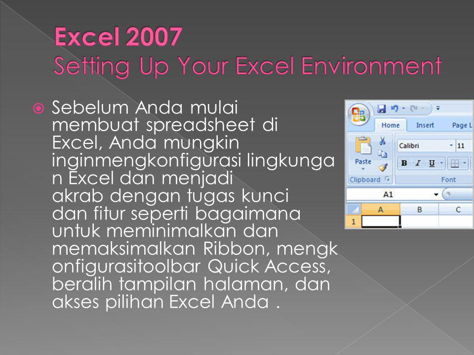 Excel 2007 Setting Up Your Excel Environment
