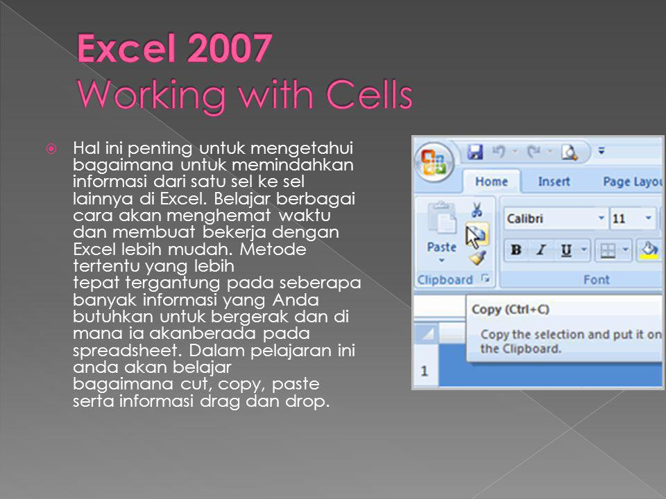 Excel 2007 Working with Cells