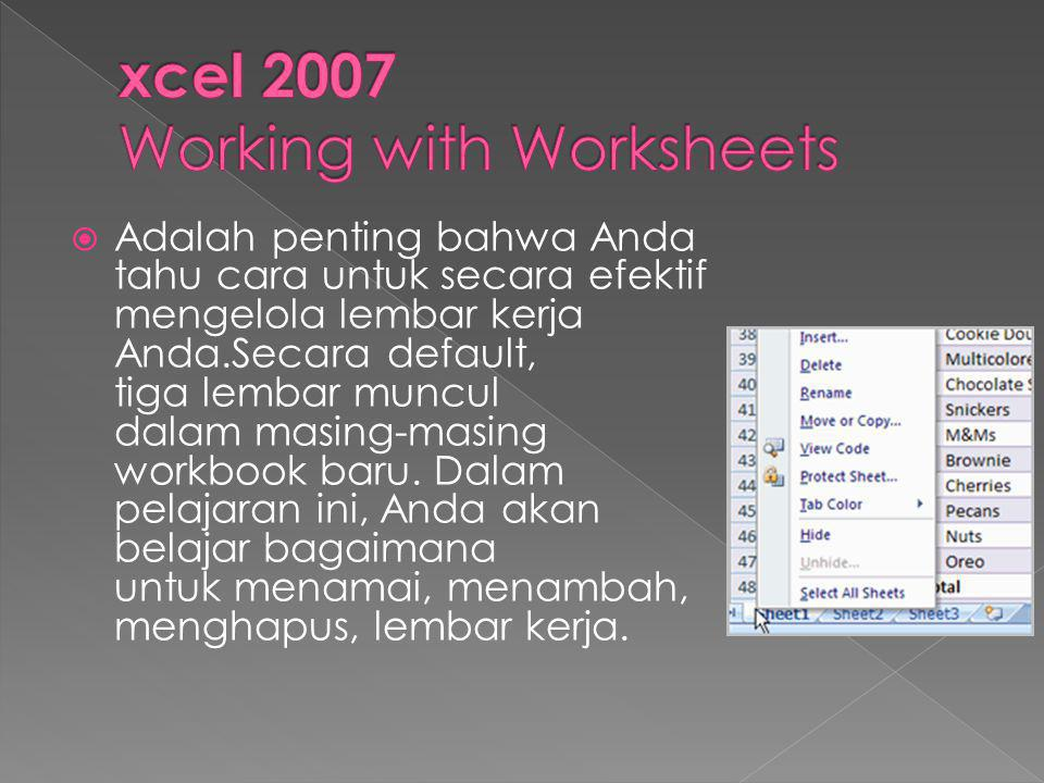 xcel 2007 Working with Worksheets
