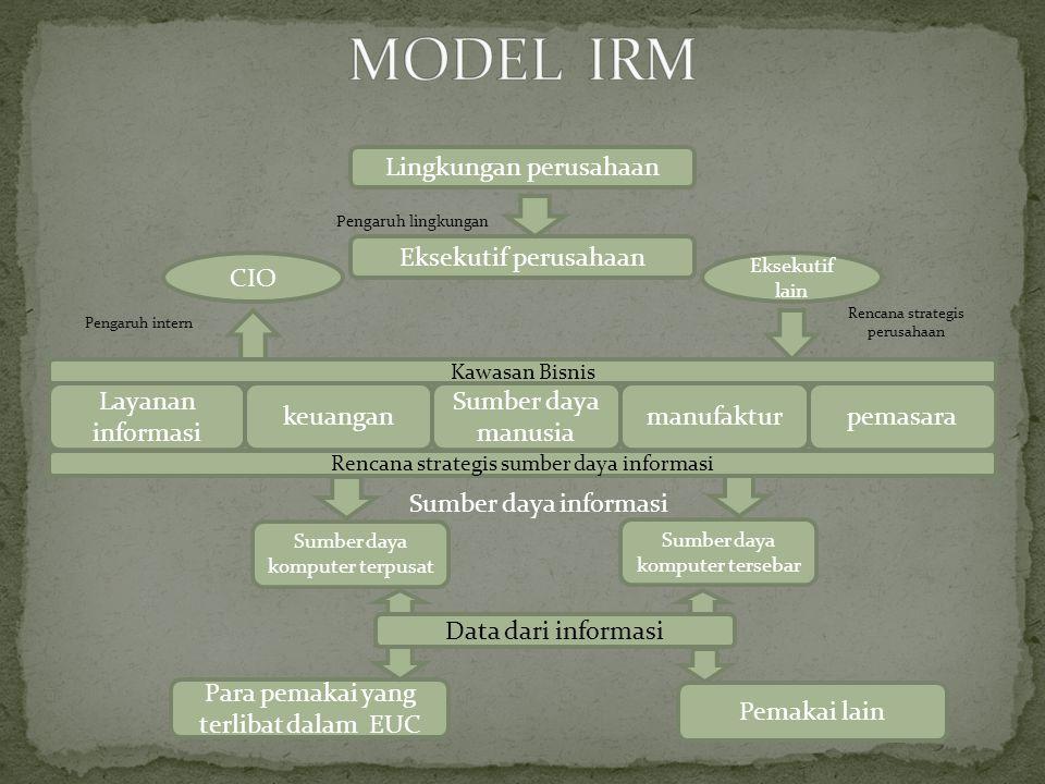 MODEL IRM Lingkungan perusahaan Eksekutif perusahaan CIO