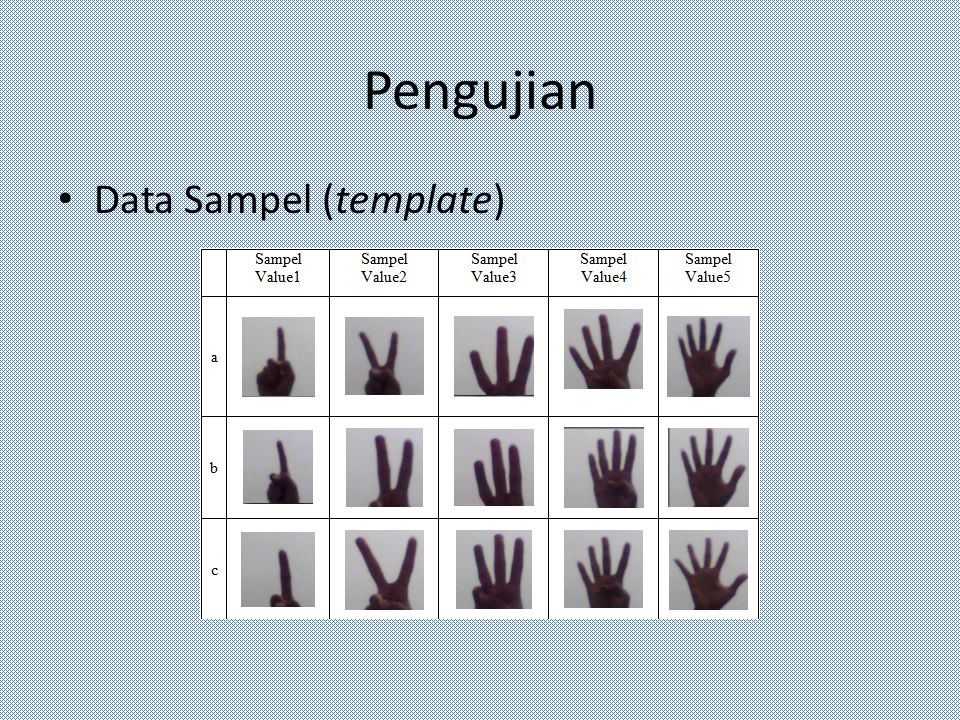 Pengujian Data Sampel (template)