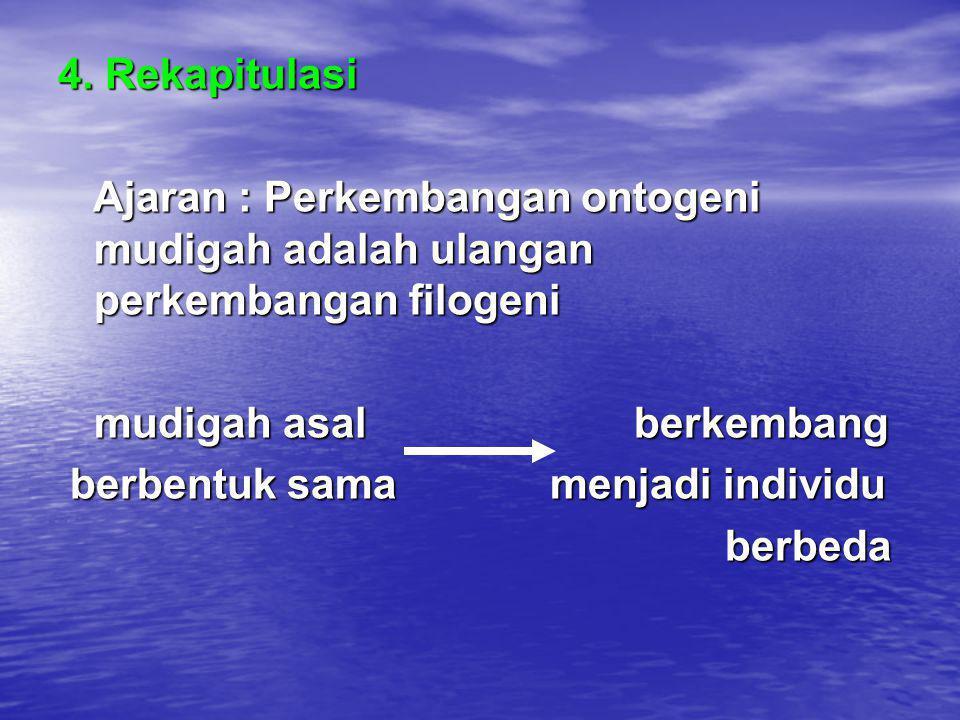 4. Rekapitulasi Ajaran : Perkembangan ontogeni mudigah adalah ulangan perkembangan filogeni. mudigah asal berkembang.