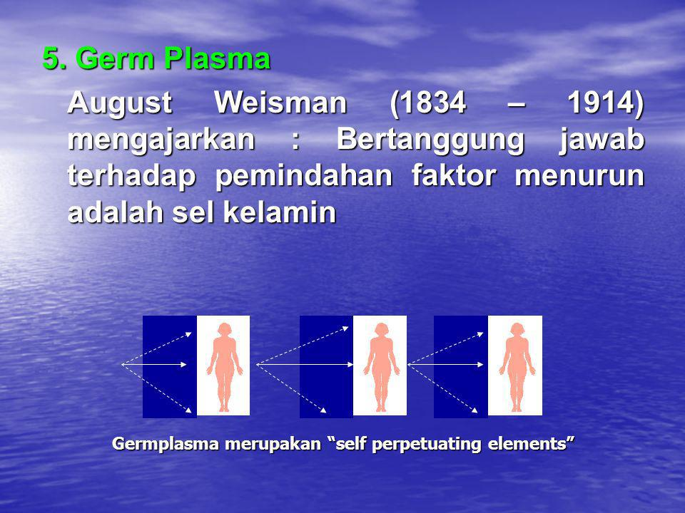 5. Germ Plasma August Weisman (1834 – 1914) mengajarkan : Bertanggung jawab terhadap pemindahan faktor menurun adalah sel kelamin.
