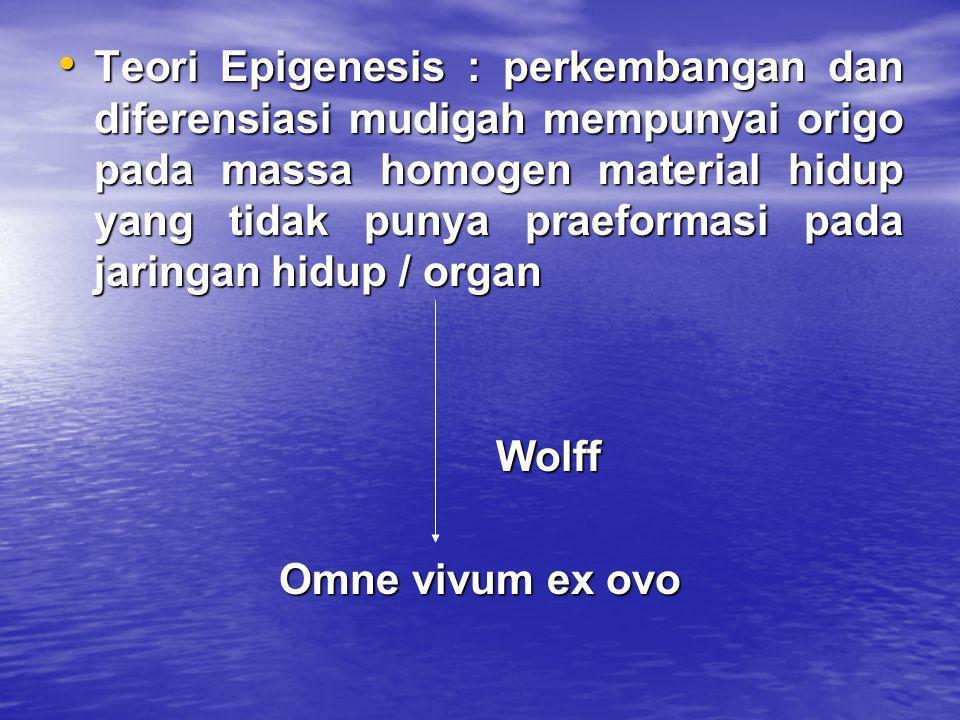 Teori Epigenesis : perkembangan dan diferensiasi mudigah mempunyai origo pada massa homogen material hidup yang tidak punya praeformasi pada jaringan hidup / organ