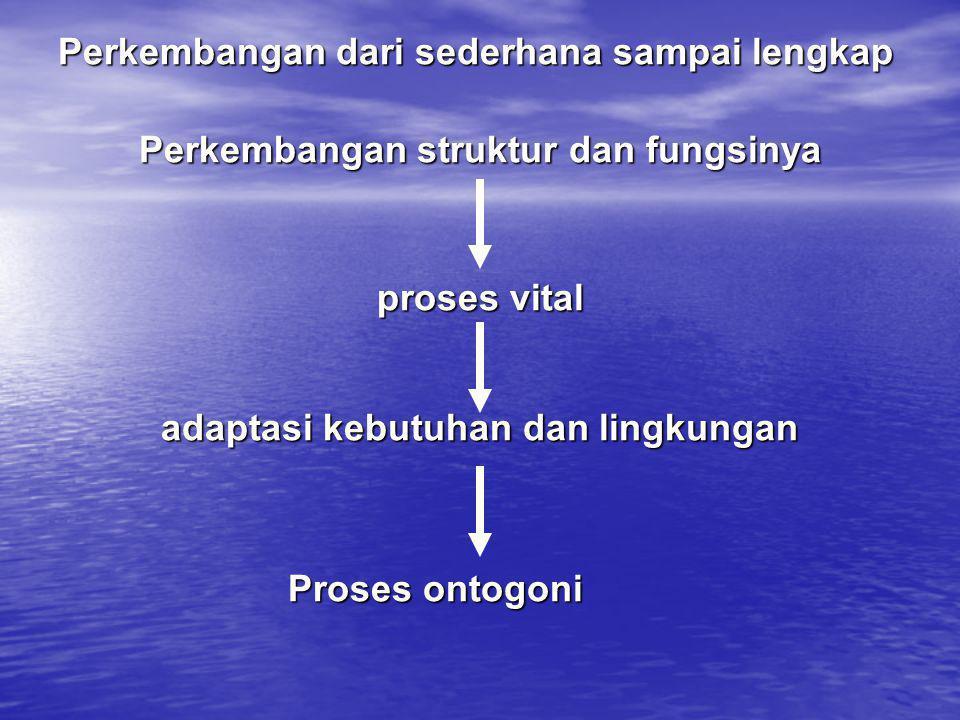 Perkembangan struktur dan fungsinya adaptasi kebutuhan dan lingkungan