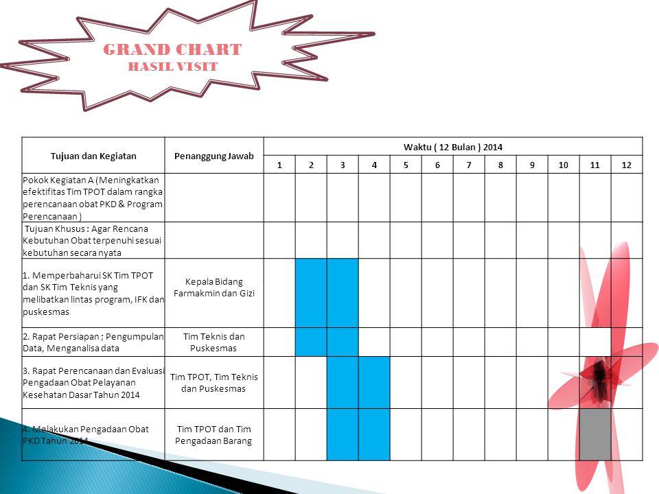 GRAND CHART HASIL VISIT Tujuan dan Kegiatan Penanggung Jawab