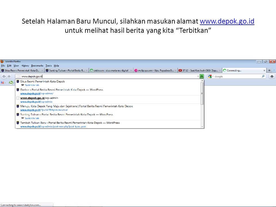 Setelah Halaman Baru Muncul, silahkan masukan alamat www. depok. go