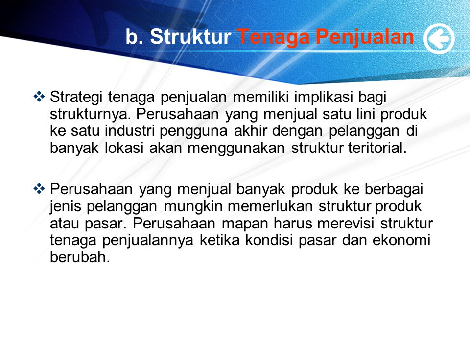 b. Struktur Tenaga Penjualan