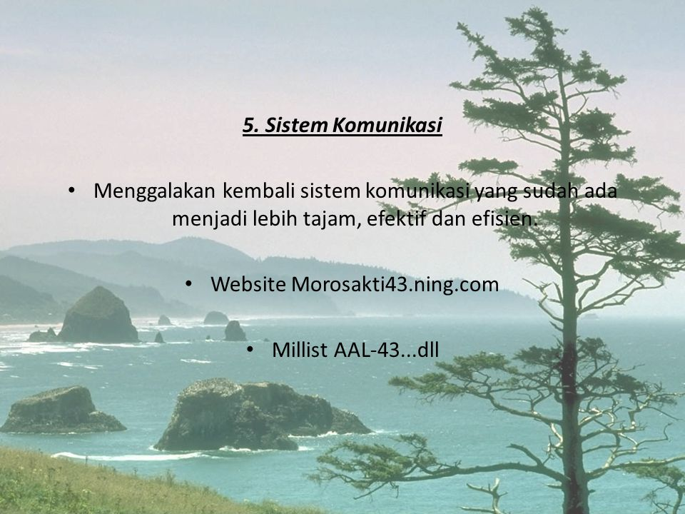 Website Morosakti43.ning.com