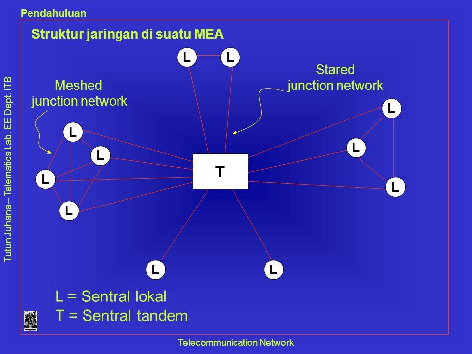 Struktur jaringan di suatu MEA