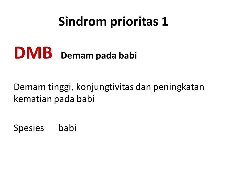 DMB Demam pada babi Sindrom prioritas 1