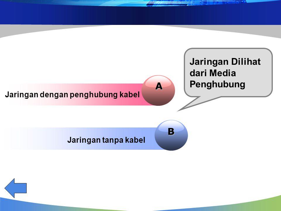 Jaringan Dilihat dari Media Penghubung